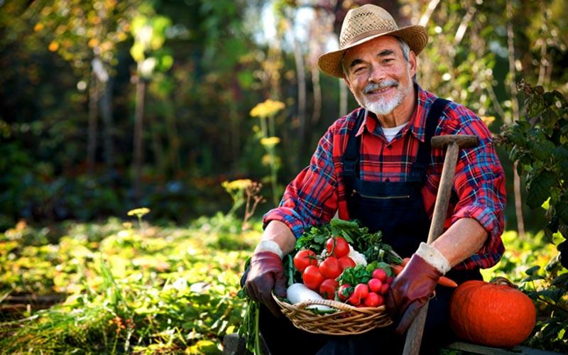 mangia-marchigiano-azienda-agricola-vendita-diretta-uomo
